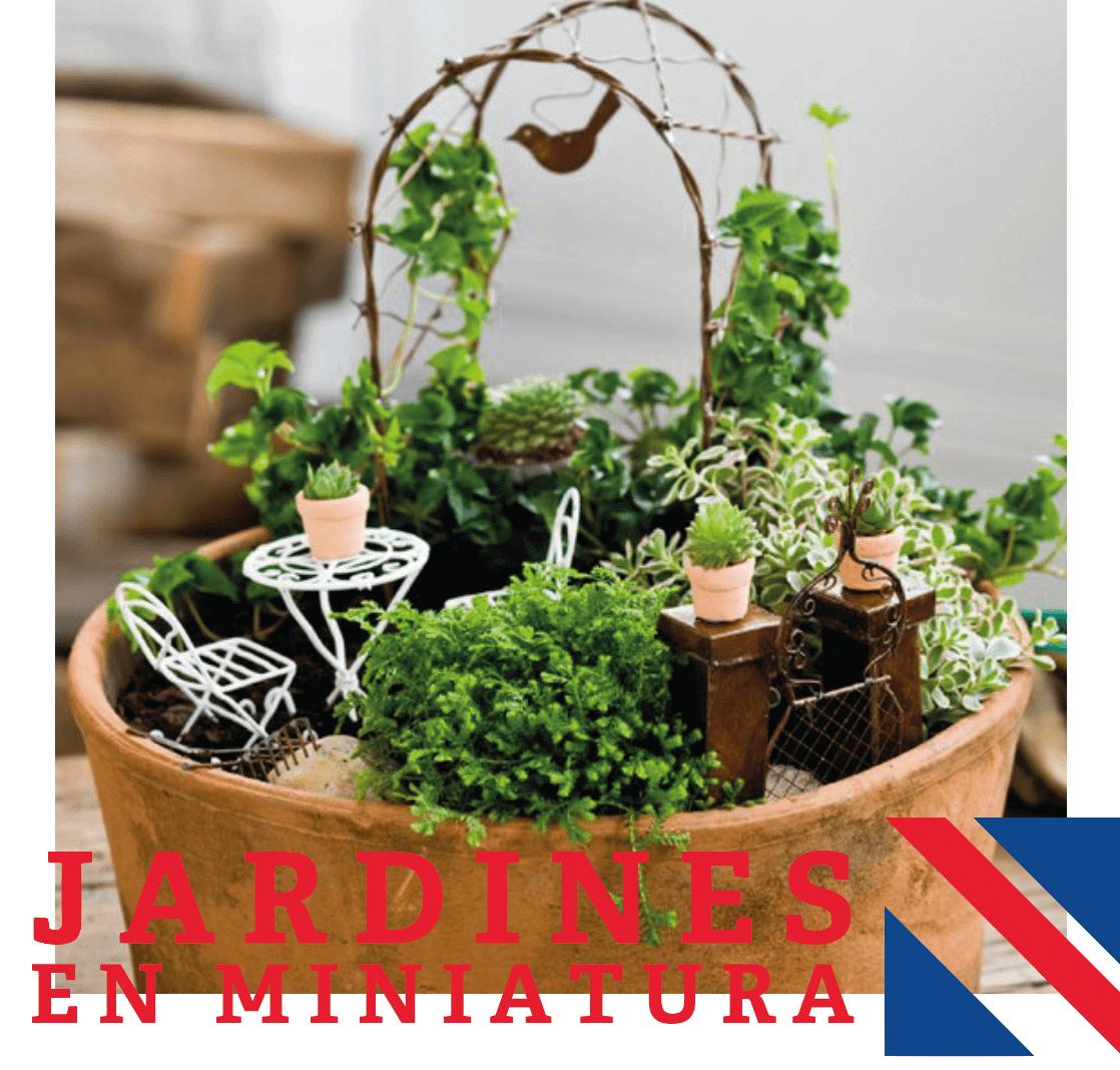 lugar - Jardines En Miniatura