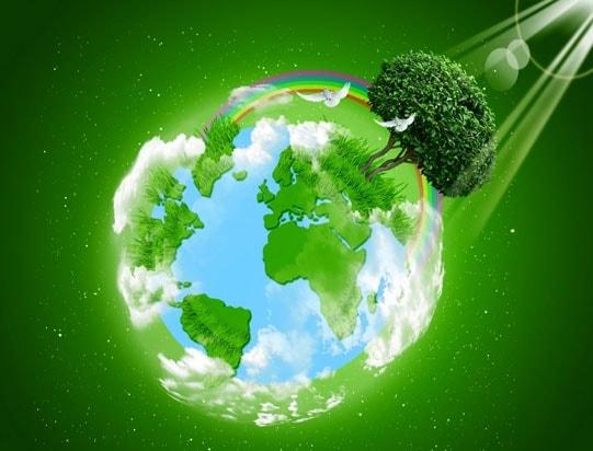 Ganadores de concurso Por un planeta verde 2016